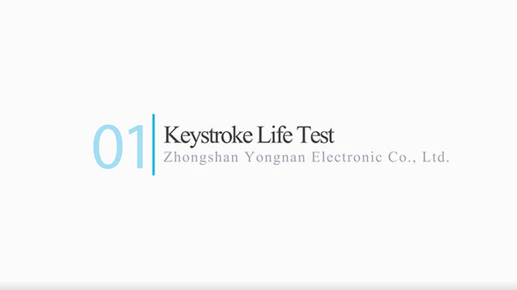 Keystroke Life Test